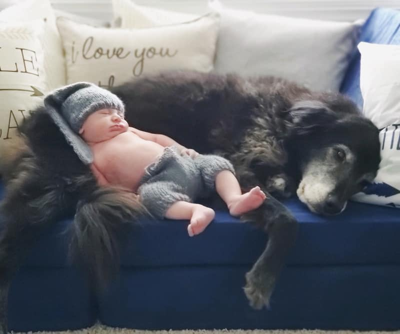 Jacob as a newborn laying with Bentley.